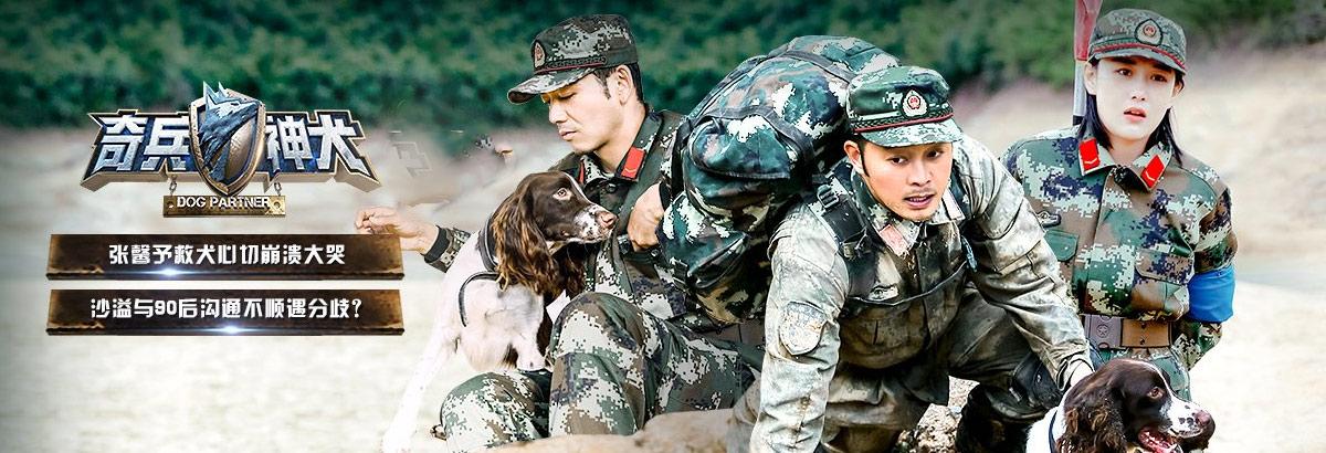 《奇兵神犬》第8期:杨烁勇救警犬感动张馨予(2017-12-22)